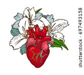 stylized anatomical human heart ... | Shutterstock .eps vector #697493158