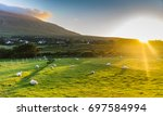 sunset over a field of sheep ... | Shutterstock . vector #697584994