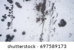 aerial view of winter forest... | Shutterstock . vector #697589173