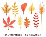 simple flat autumn leaves and... | Shutterstock .eps vector #697862584