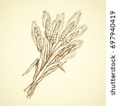 whole caryopsis stalks bundle... | Shutterstock .eps vector #697940419