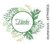 aromatic medicinal herbs. grand ... | Shutterstock .eps vector #697945816