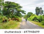 The Boy And Cows Herd Daklak ...