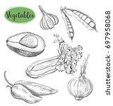 vegetables sketch set. hand... | Shutterstock . vector #697958068
