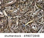 wood chips texture background... | Shutterstock . vector #698072848