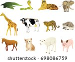 set of animals collection... | Shutterstock .eps vector #698086759