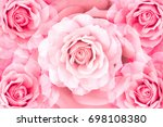 floral background of... | Shutterstock . vector #698108380