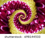 Magenta Yellow Flower Spiral...