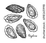 oysters ink sketch. isolated on ...