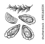 oysters ink sketch. isolated on ... | Shutterstock .eps vector #698166034