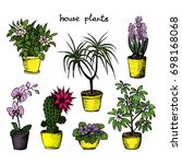 house plants   set of 7 color... | Shutterstock .eps vector #698168068