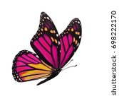 beautiful colorful monarch... | Shutterstock . vector #698222170