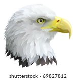 Illustration of a eagles head in profile. - stock photo