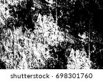 texture black and white from... | Shutterstock . vector #698301760