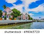 beautiful pink tropical... | Shutterstock . vector #698365723