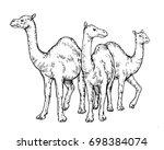 vintage hand drawing muslim... | Shutterstock .eps vector #698384074