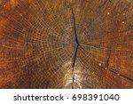 rich wood close up texture. | Shutterstock . vector #698391040