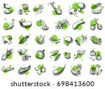 vegetable vector set. hand... | Shutterstock .eps vector #698413600