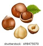 hazelnut | Shutterstock . vector #698475070
