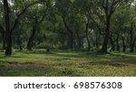 forest park scenery    Shutterstock . vector #698576308