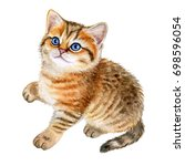 Stock photo cute british kitten with blue eyes isolated on white background watercolor illustration template 698596054