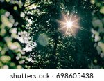 the sun's rays lit through tree ... | Shutterstock . vector #698605438