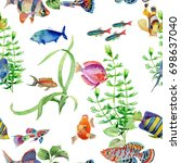watercolor hand drawn tropical... | Shutterstock . vector #698637040
