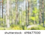 blurred image of trees in the... | Shutterstock . vector #698677030
