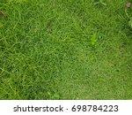 green grass texture used as...   Shutterstock . vector #698784223