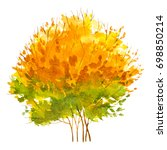 autumn trees. fall season. | Shutterstock . vector #698850214