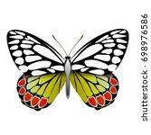 vector drawing bright... | Shutterstock .eps vector #698976586