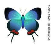 vector drawing blue butterfly | Shutterstock .eps vector #698976643