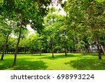 green trees in public park with ... | Shutterstock . vector #698993224