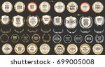 luxury gold and silver design... | Shutterstock .eps vector #699005008