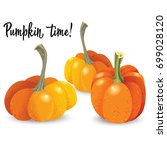 three different orange pumpkin...