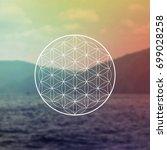flower of life sacred geometry... | Shutterstock .eps vector #699028258