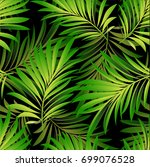 tropical palm leaves  jungle... | Shutterstock .eps vector #699076528