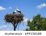 Stork's Nest  Natural Stork's...