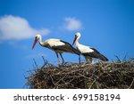 stork's nest  natural stork's... | Shutterstock . vector #699158194