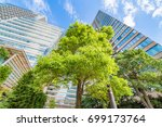 fresh green and building | Shutterstock . vector #699173764