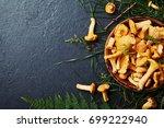 yellow mushrooms chanterelle ...   Shutterstock . vector #699222940