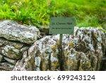 ancient st kieran's well in... | Shutterstock . vector #699243124