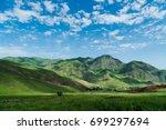 summer mountains  | Shutterstock . vector #699297694