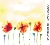 three orange red poppies with... | Shutterstock . vector #699380200