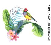 hand drawn watercolor... | Shutterstock . vector #699391258