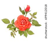 one orange rose flower with... | Shutterstock . vector #699412018