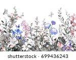 seamless rim. border with herbs ... | Shutterstock . vector #699436243