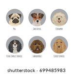 dog animal pet round circle... | Shutterstock .eps vector #699485983