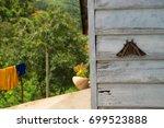 butterfly in the garden | Shutterstock . vector #699523888