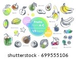 fruits   hand drawn vector set. ... | Shutterstock .eps vector #699555106